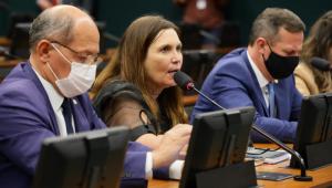 Deputada Bia Kicis ao lado de dois homens falando em microfone durante sessão na Câmara