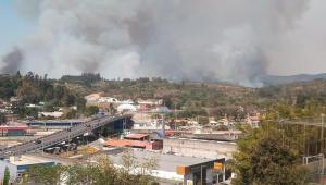 Foto de longe do incêndio no Parque Estadual do Juquery