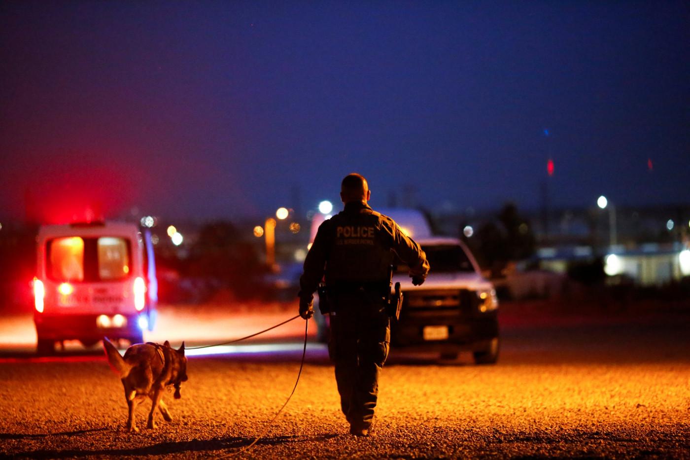 Policial da imigração faz buscas com cão farejador na fronteira entre México e Estados Unidos