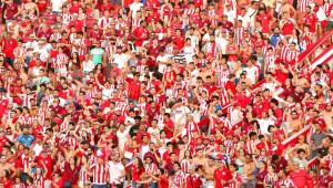 Governo de Pernambuco libera a volta de público aos estádios