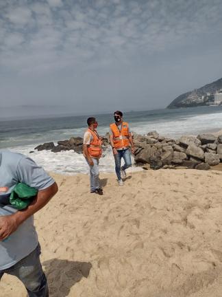 Baleia encontrada morta na praia do Leblon