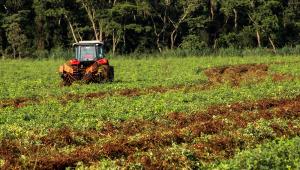 Máquina vermelha andando em cima de uma plantação com gramas verdes e marrons