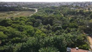 Área de mata onde mulher teria desaparecido em João Pessoa