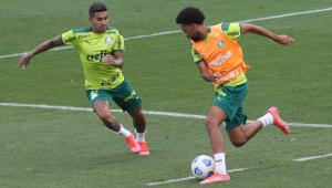 Dudu treinando no CT do Palmeiras