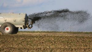 Caminhão (só a parte com a roda traseira esquerda aparece na foto) despeja fertilizante no campo